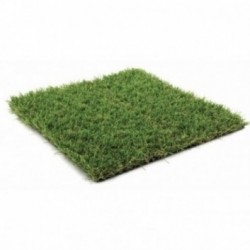 ORYZON GRASS Moutain Creek en coupon