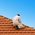 Terrasses et toitures